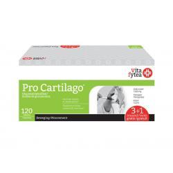 Pro cartilago one a day