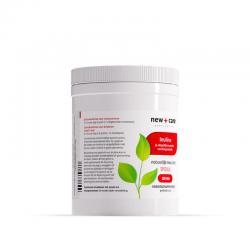 Prebioticum inuline