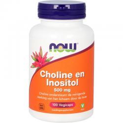 Choline en inositol 500mg