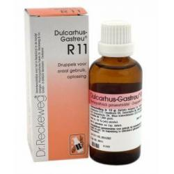 Dulcarhus gastreu R11