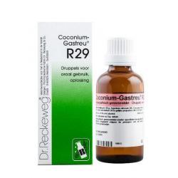 Coconium gastreu R29