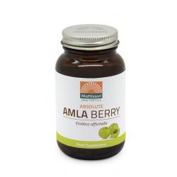 Absolute amla berry extract 500mg