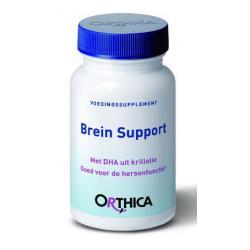Brein support