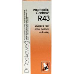 Arsetabilis gastreu R43