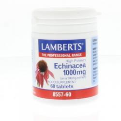 Echinacea 1000 mg