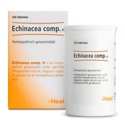 Echinacea compositum H